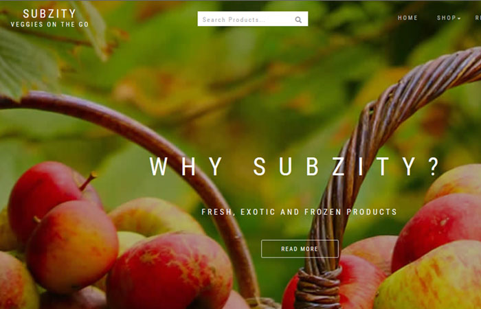 SUBZITY - VEGGIES ON THE GO